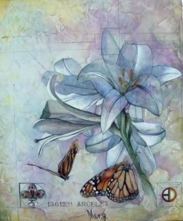 La farfalla non conta i mesi ma gli attimi …