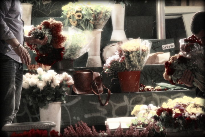 Dana Tomsa Oberhoffer - Flowers for Bruno
