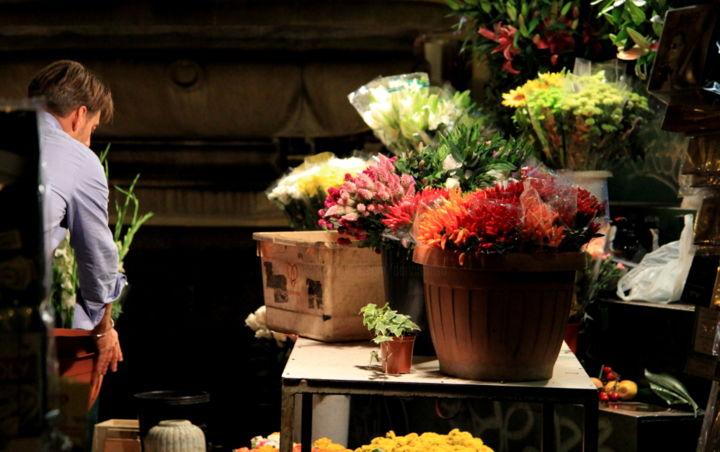 Dana Tomsa Oberhoffer - Flowers for Bruno 2
